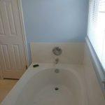 Tanzanite-Double-Bathroom-Remodel-1526499740890