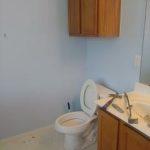 Tanzanite-Double-Bathroom-Remodel-1526502078931